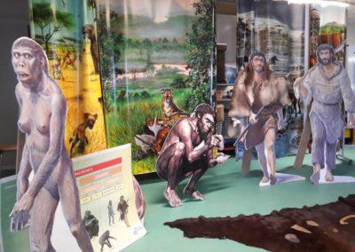 les 1ers hominidés